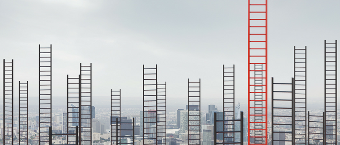 sales leader ladders-1
